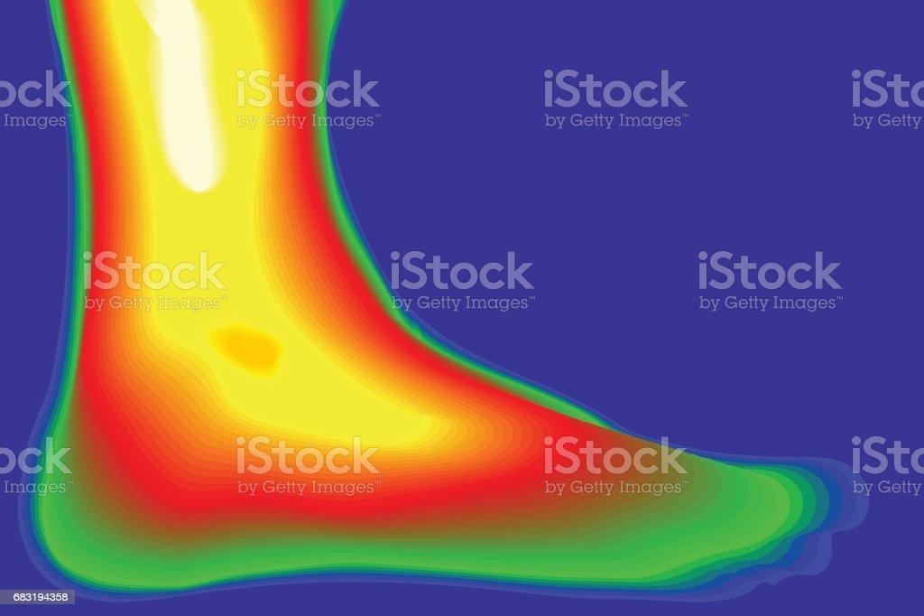 人類的腿向量。熱像儀。 免版稅 人類的腿向量熱像儀 向量插圖及更多 人手指 圖片