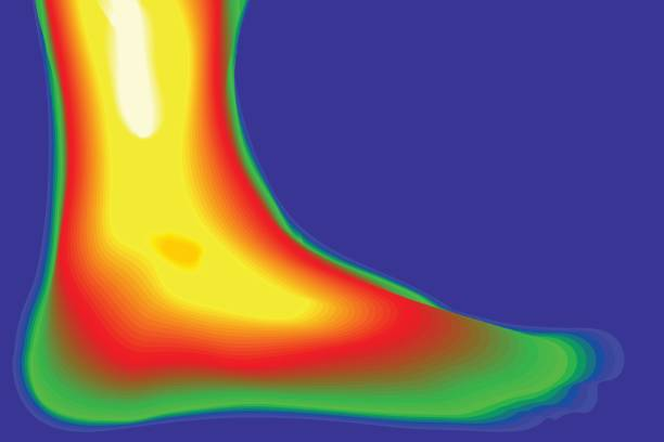 menschliches bein vektor. wärmebildkamera. - infrarotfotografie stock-grafiken, -clipart, -cartoons und -symbole