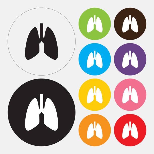 stockillustraties, clipart, cartoons en iconen met menselijke longen pictogram - longen
