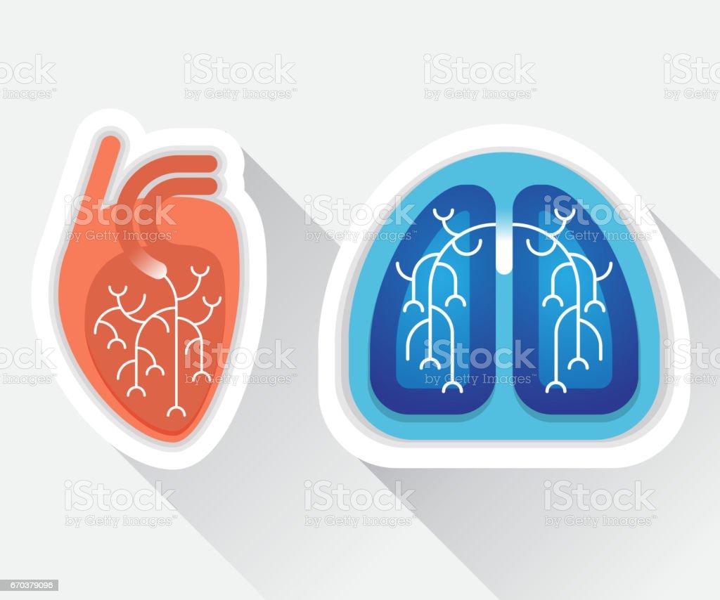 Menschliche Lunge und Herz flach illustration – Vektorgrafik