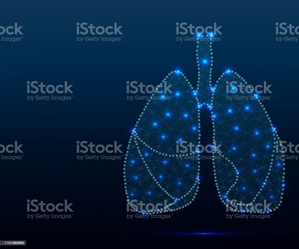 Human lungs in polygonal low poly with triangles style. Lungs of...