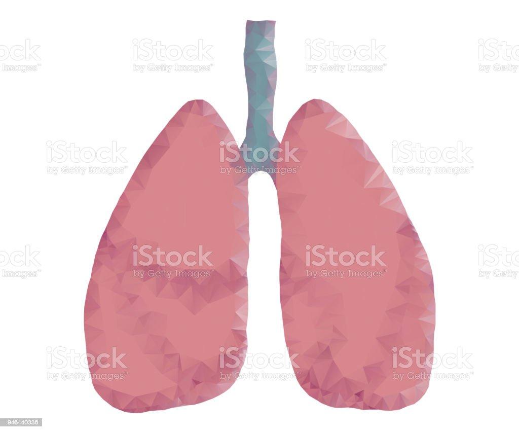 Menschliche Lunge Polygon Stock Vektor Art und mehr Bilder von ...