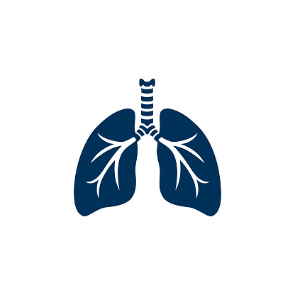 Human lungs silhouette