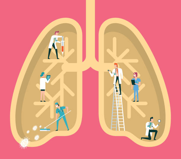 Human lungs Team of doctors diagnose human lungs biomedical illustration stock illustrations