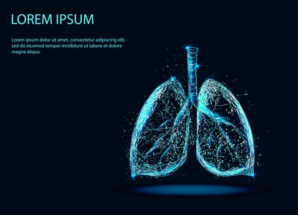 stockillustraties, clipart, cartoons en iconen met menselijke longen - longen