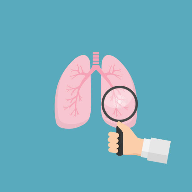 Human lungs with hand holding magnifying glass. Medical tool for diagnosing of diseases of lungs. Health care and medicine concept Human lungs with hand holding magnifying glass lung stock illustrations