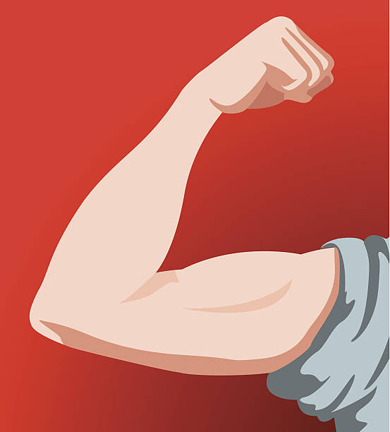 human male anatomy arm - cartoon muscle arms stock illustrations, clip art, cartoons, & icons