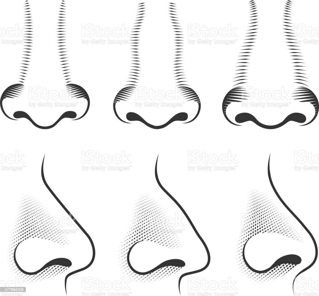 Human Nose black & white royalty free vector icon set vector art illustration