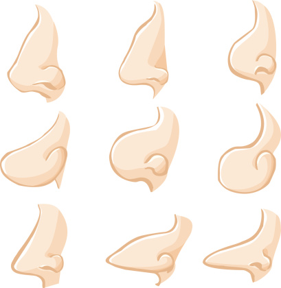 Human Noses - Illustration