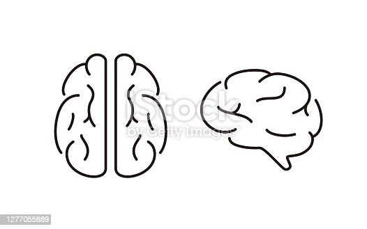 istock human organ brain flat icon, vector illustration 1277055889
