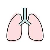 istock human organ lungs flat icon, vector illustration 1149674707
