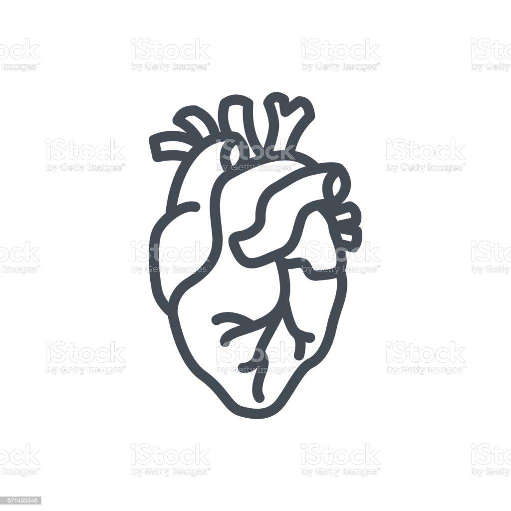 Human Organs Medicine Line Icon Heart vector art illustration