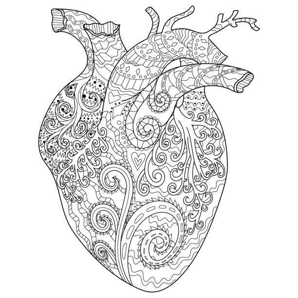 Human patterned heart for coloring book. Adult coloring page for antistress art therapy with editable line. Human patterned heart in doodle style. Template for t-shirt, tattoo, poster or cover. Colouring book for Valentines day. coloring book pages templates stock illustrations