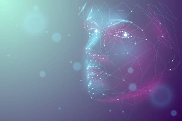 human polygonal face - wire frame model stock illustrations