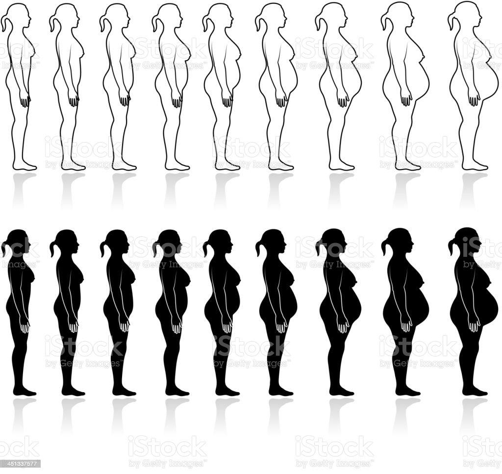 Human Pregnancy Development black & white vector icon set vector art illustration