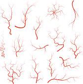 Human red eye veins set, anatomy blood vessel arteries illustration group. Vector medical eyeball vein arteries system map. Veins isolated on white background