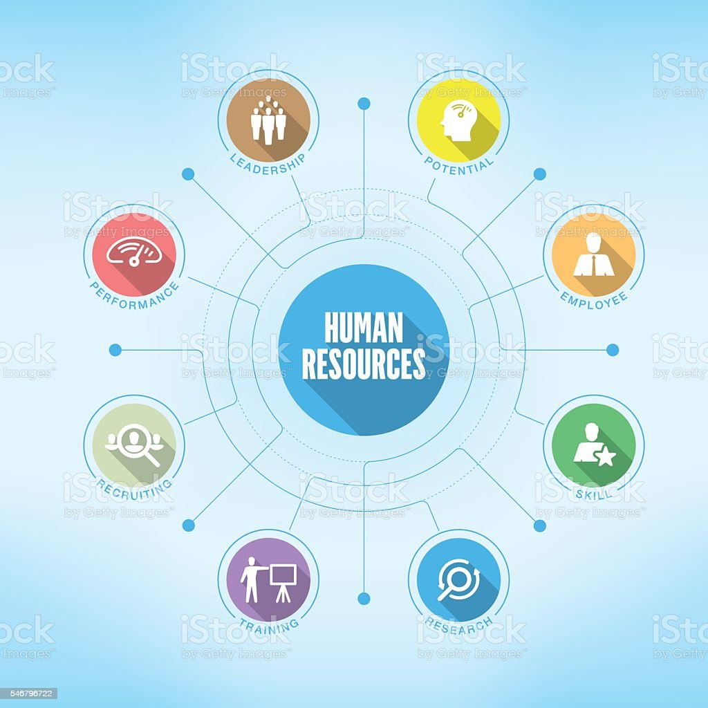 Human Resources chart with keywords and icons vector art illustration