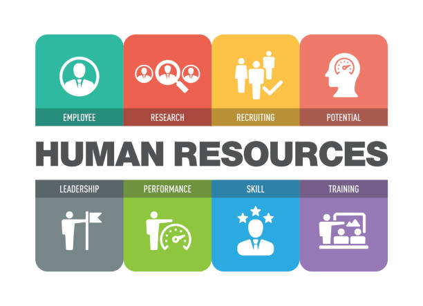 Best Human Resources Illustrations, Royalty-Free Vector