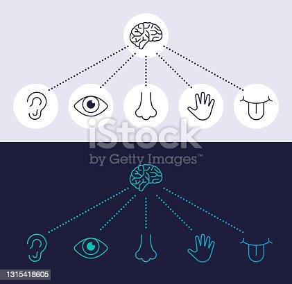 istock Human Senses Line Icon Symbols 1315418605