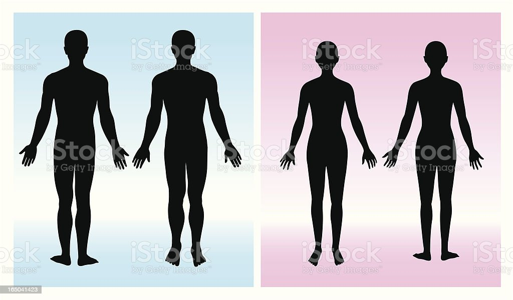 human silhouette vector art illustration