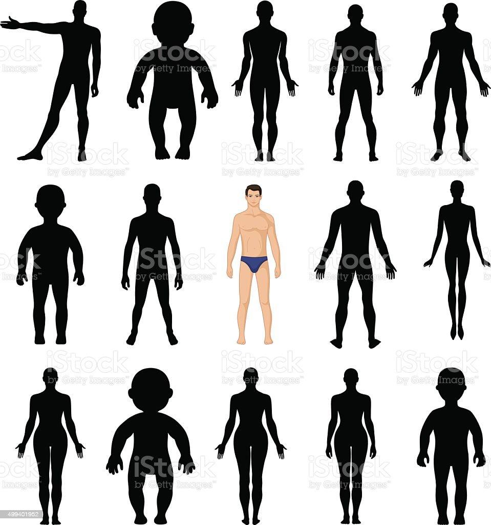Human silhouettes template figure vector art illustration
