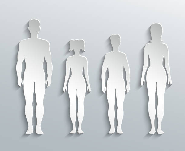 Human silhouettes Human silhouettes. Man, Woman and Children paper outline female likeness stock illustrations
