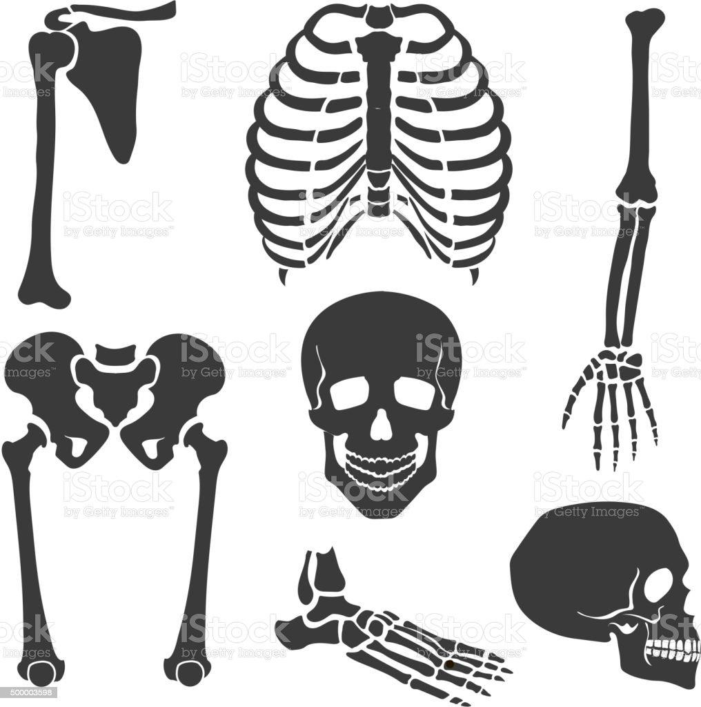 骸骨ますベクトルイラストセットブラック 2015年のベクターアート素材