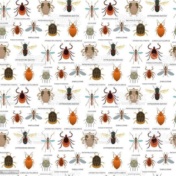 Human skin parasites vector housing pests insects disease parasitic vector id936672090?b=1&k=6&m=936672090&s=612x612&h=qtj0frxefzxnjdii50yduvlzzmcljhlgcnlbroy48dw=
