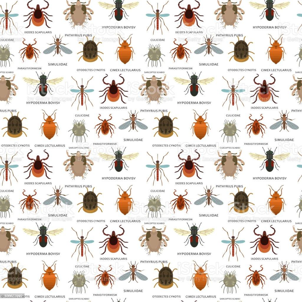 Vetor de parasitas de pele humana pragas insetos doença parasitária bug macro mordida animal perigosa infecção medicina pragas sem costura padrão fundo ilustração de habitação - ilustração de arte em vetor