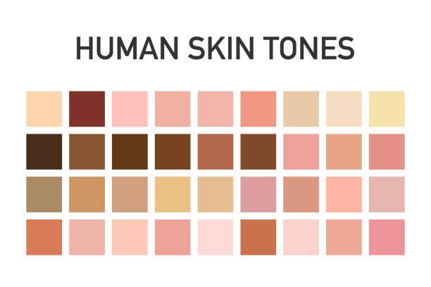 Human skin tone color palette set isolated on transparent background. Art design. Vector illustration. Human skin tone color palette set isolated on transparent background. Art design. Vector stock illustration. toned image stock illustrations