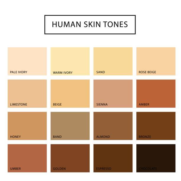 stockillustraties, clipart, cartoons en iconen met menselijke huid toon set - menselijke huid