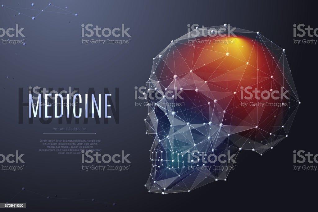 human skull low poly color vector art illustration