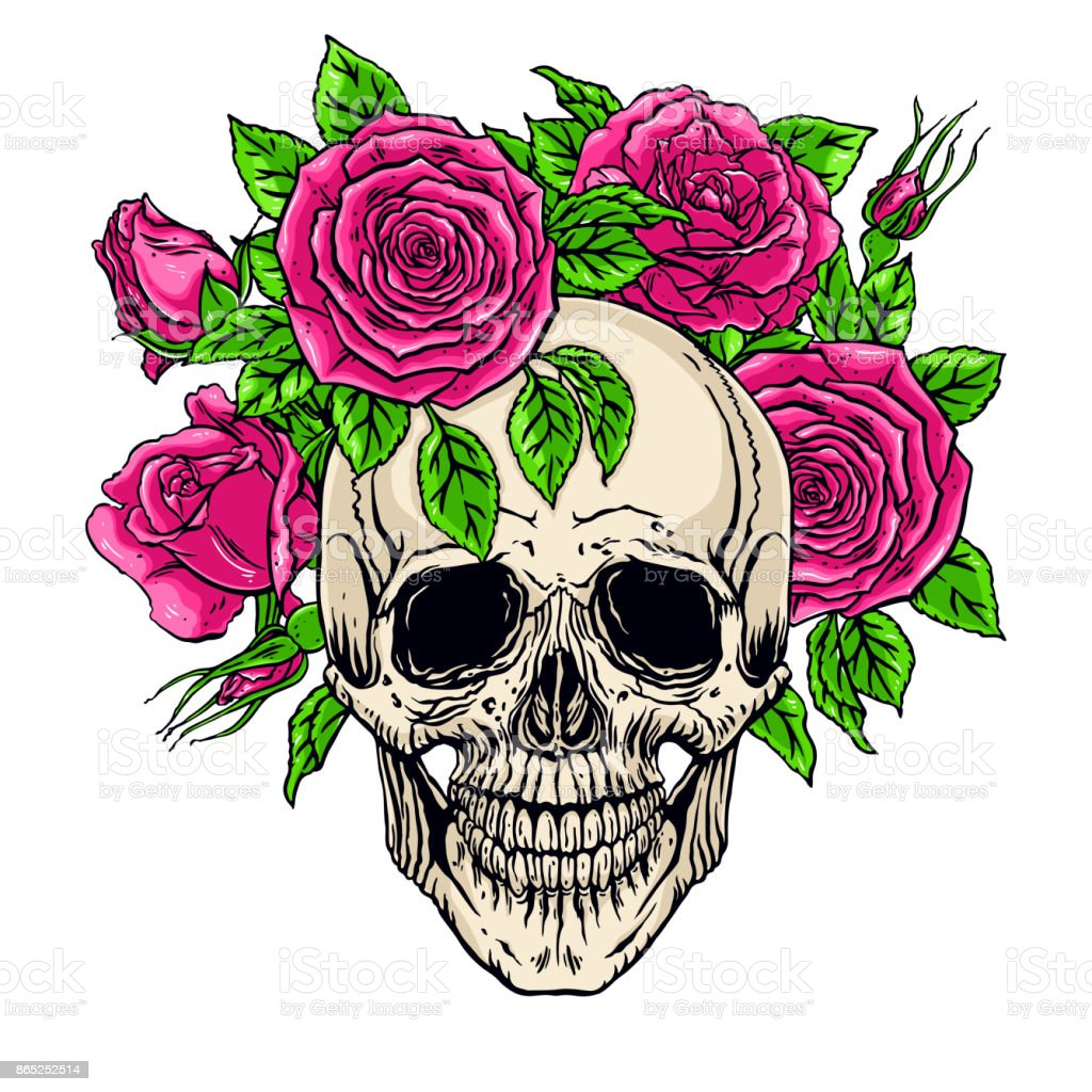 Human Skull With A Roses Wreath Stock Vector Art More Images Of