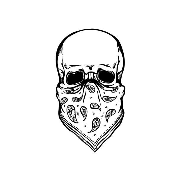 Human skull with bandana as face mask in sketch style isolated on white background. Human skull with bandana as face mask in sketch style isolated on white background - skeletal bone in rock or rap style with kerchief in hand drawn vector illustration. headscarf stock illustrations