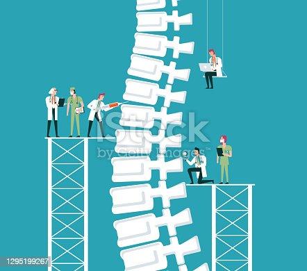 istock Human Spine 1295199267