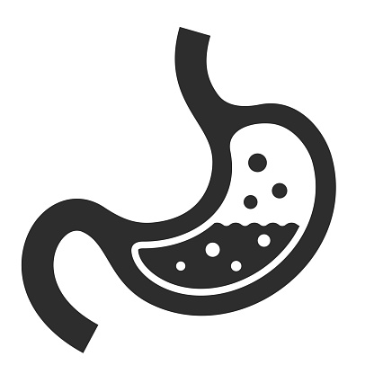 Human stomach vector icon on white background