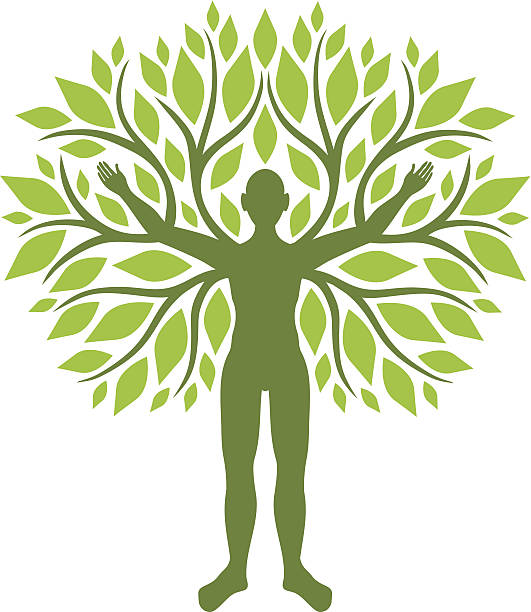 Human tree Man with branches and leaves qigong stock illustrations