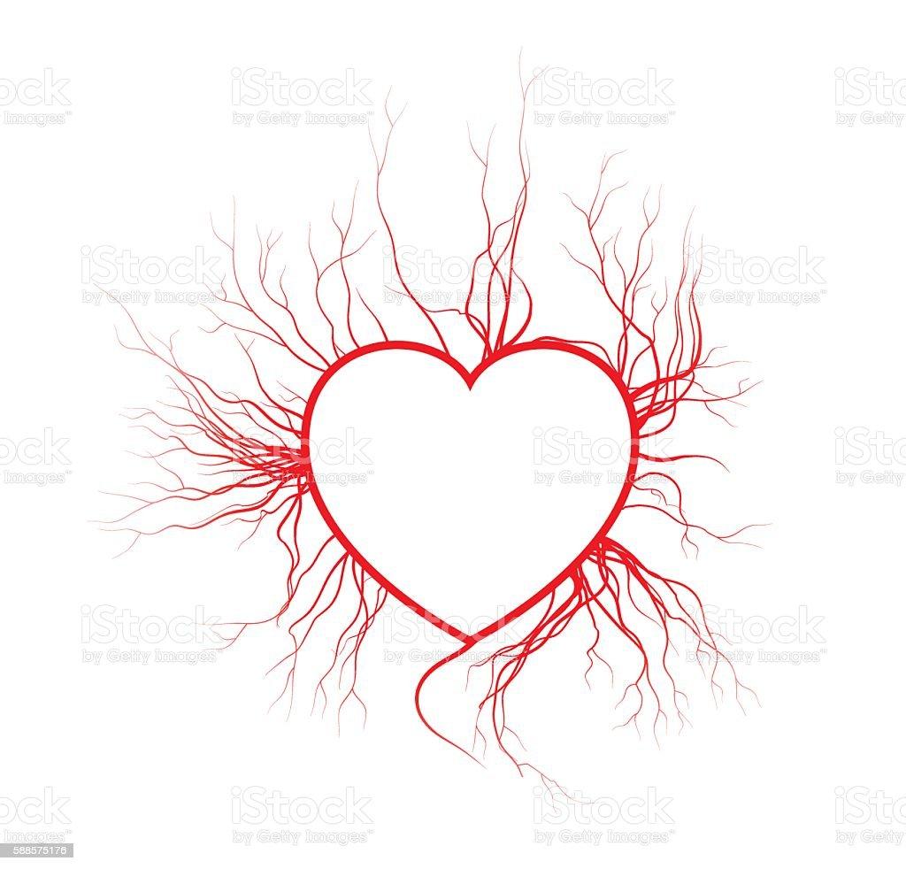 human veins with heart, red love blood vessels valentine design. vector art illustration