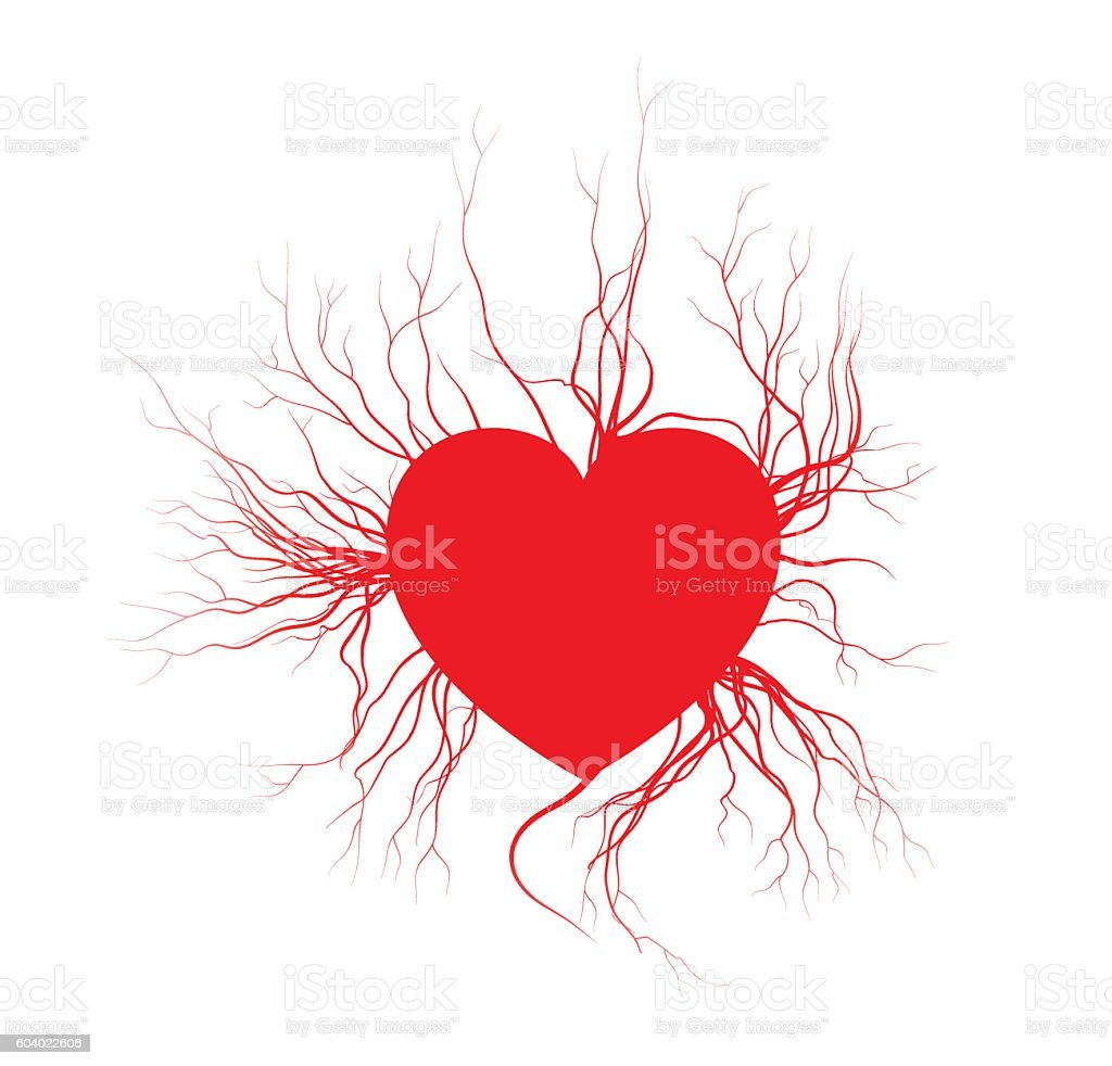 Human Veins With Heart Red Love Blood Vessels Valentine Design Stock