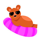 istock A humanized cute brown bear in sunglasses lies on a pink mattress. Vector illustration isolated on white background 1188976550