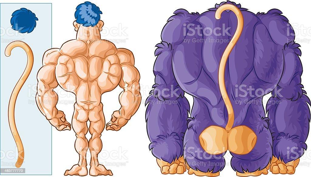 Ilustración de Gorila De Seres Humanos Y De La Espalda y más banco ...