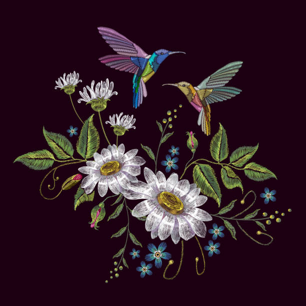Humming bird and chamomile embroidery. Beautiful hummingbirds and white chamomile embroidery on black background. Template for clothes, textiles, t-shirt design vector art illustration