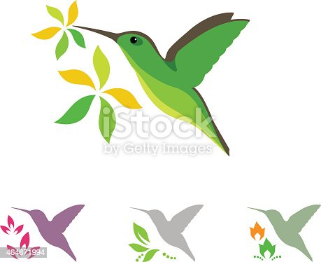 Humming bird and flowers vector illustration