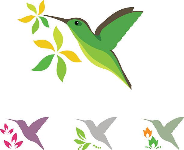 humming bird and flower icons - hummingbird stock illustrations
