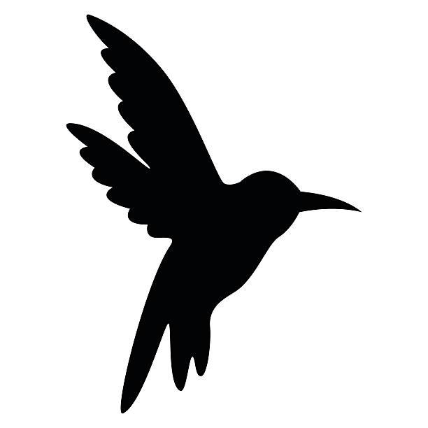 Humming bird bird flying in open air - VECTOR vector art illustration