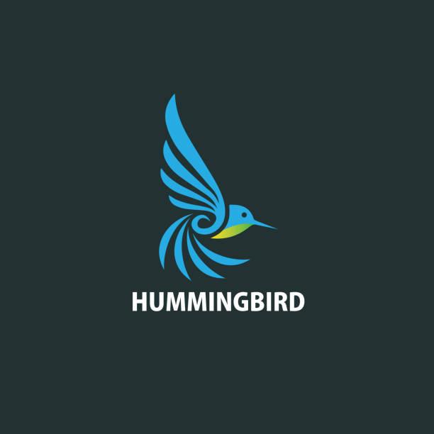 Humming bird logo Humming bird logo hummingbird stock illustrations