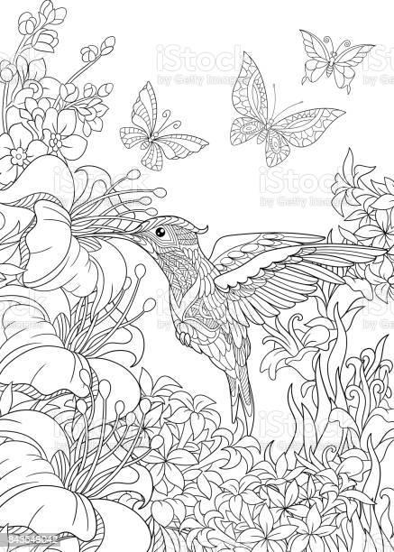Hummingbird and butterflies vector id843549042?b=1&k=6&m=843549042&s=612x612&h=w9xzw iz8hecztvh9ido55 vykspoe9wlowtyti0hwe=