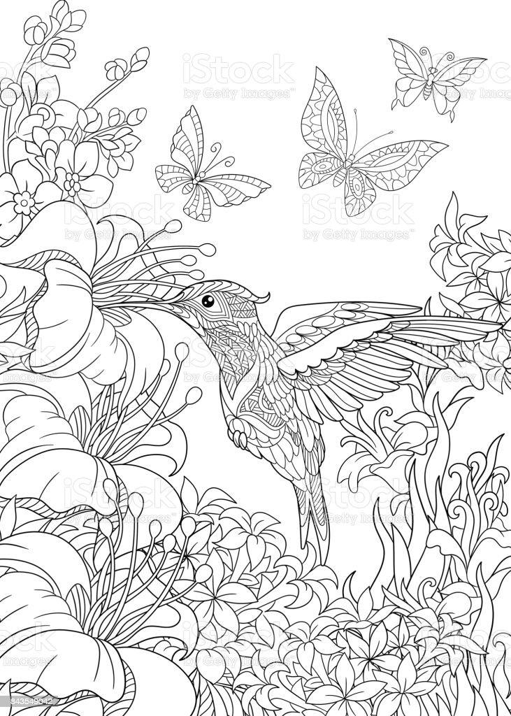 Hummingbird and butterflies vector art illustration