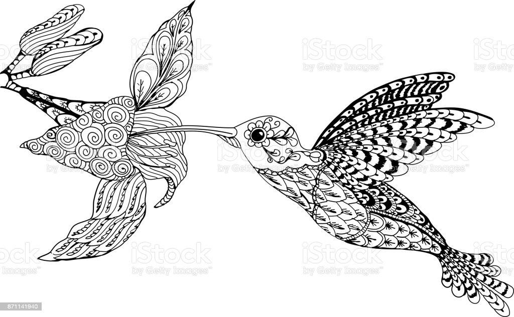 Ilustración de Colibrí Y La Flor Patrones Dibujados A Mano Para ...