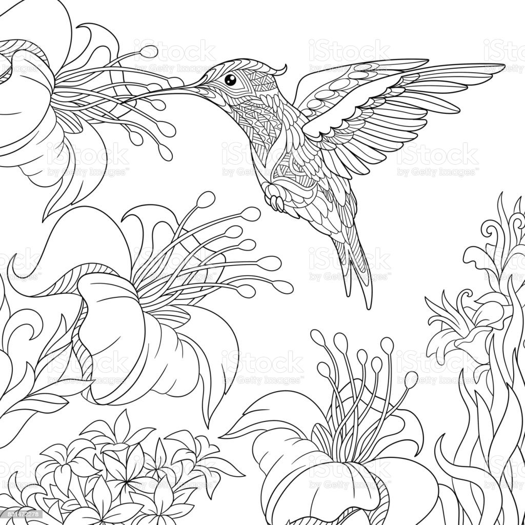 Hummingbird and hibiscus flowers vector art illustration